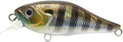 http://fishing-club.at.ua/_fr/0/2771747.jpg